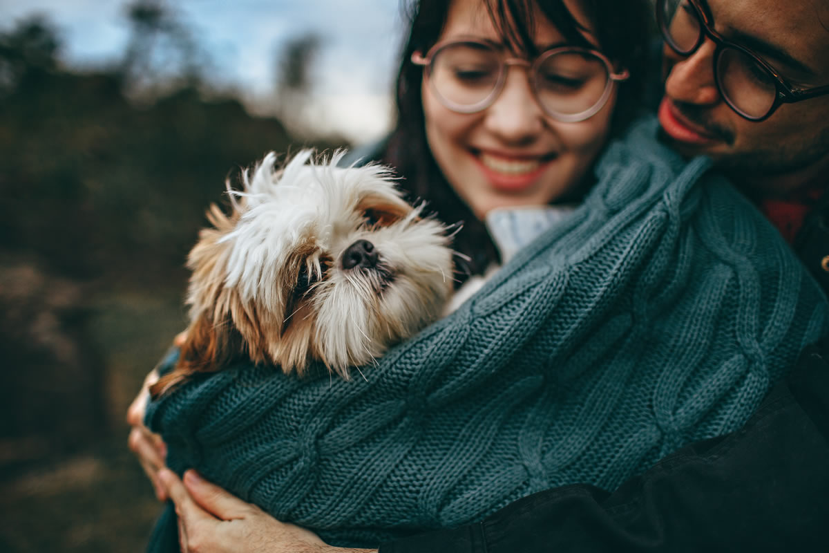 How to Stop Your Divorce Case From Becoming a Dog Fight
